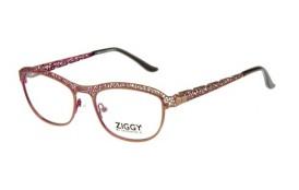 Brýlová obruba Ziggy ZIG-1505