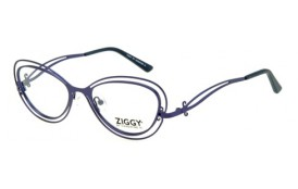 Brýlová obruba Ziggy ZIG-1506