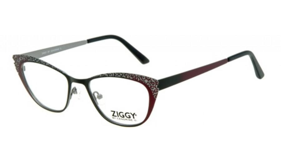 Ziggy Eyeglass Frames : frame Ziggy 1507 C2 - Obruby.cz
