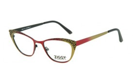 Brýlová obruba Ziggy ZIG-1507
