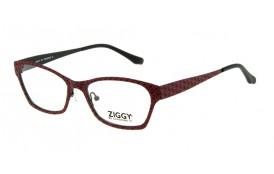 Brýlová obruba Ziggy ZIG-1508