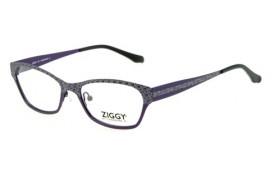 Brýlová obruba Ziggy ZIG-1509