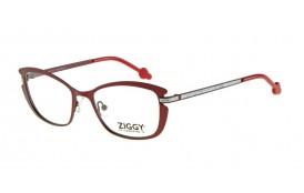 Brýlová obruba Ziggy ZIG-1513