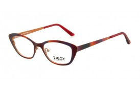 Brýlová obruba Ziggy ZIG-1518