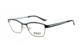 Brýlová obruba Ziggy ZIG-1519