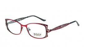 Brýlová obruba Ziggy ZIG-1520