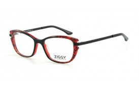 Brýlová obruba Ziggy ZIG-1621