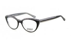 Brýlová obruba Ziggy ZIG-1622