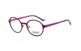 Brýlová obruba Ziggy ZIG-1627