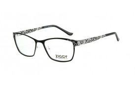 Brýlová obruba Ziggy ZIG-1628