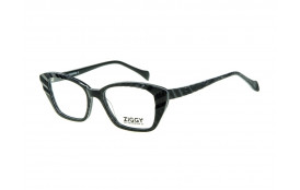 Brýlová obruba Ziggy ZIG-1781