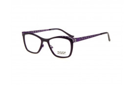 Brýlová obruba Ziggy ZIG-1800