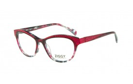 Brýlová obruba Ziggy ZIG-1820