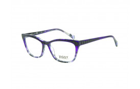Brýlová obruba Ziggy ZIG-1821