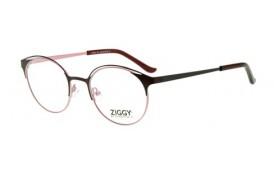 Brýlová obruba Ziggy ZIG-1929